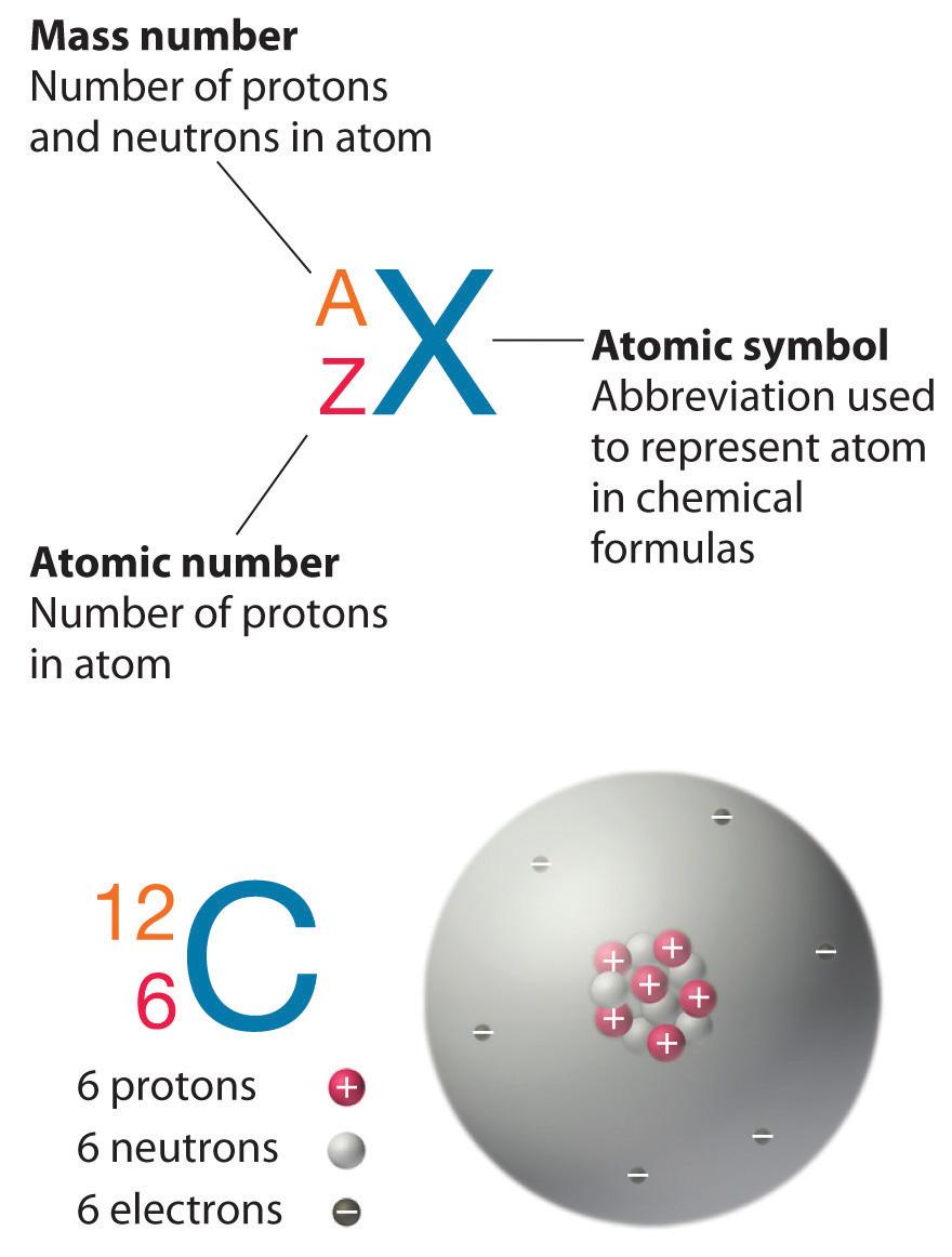 Isotopes and atomic masses buycottarizona